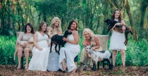 Orlando Wedding Planners Nicole Squared Events_5